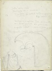 Giuseppe Verdi Abigaille / Giuseppina Strepponi / Figurino